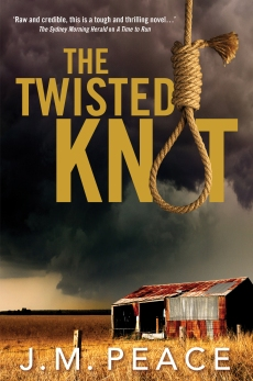 3793 Twisted Knot_COVER